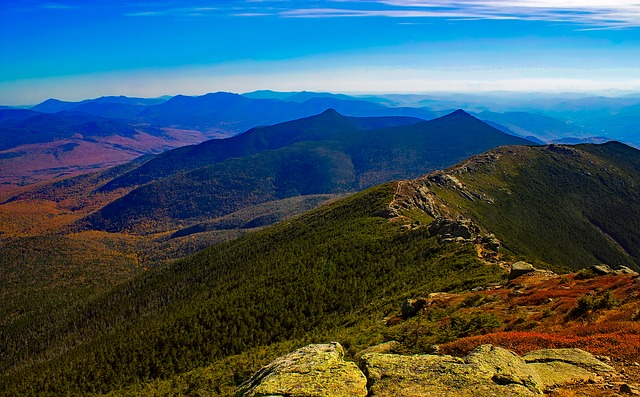 white mountains new hampshire forest